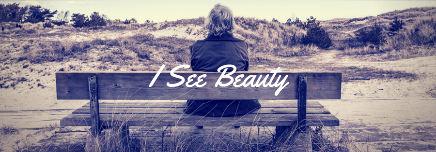I See Beauty by Helen Sherwin